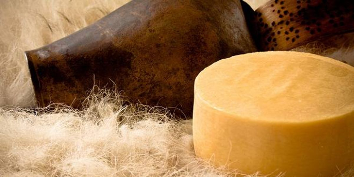 Queso de oveja: La técnica del País Vasco en el sur del mundo