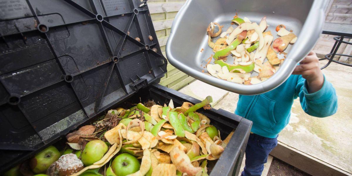 Wasted!: El documental del chef Bourdain que te enseñará a no botar la comida