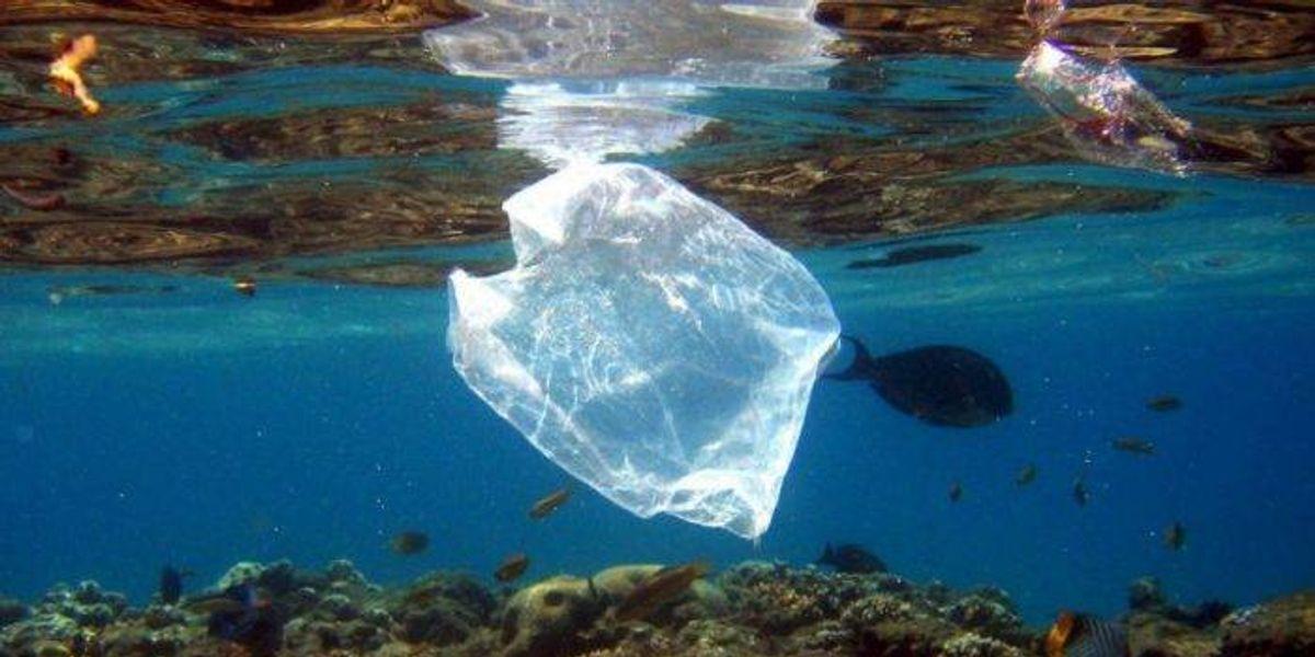 Kenia castiga hasta con cárcel la producción, venta y uso de bolsas de plástico