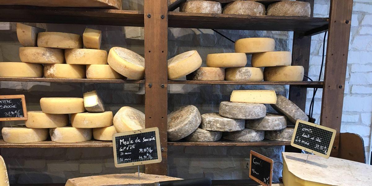 ¿Eres fan de queso? Estudio revela que comer queso ayuda a vivir más