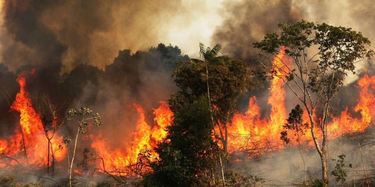 La impresionante imagen de los incendios en el Amazonas, uno de los pulmones del mundo
