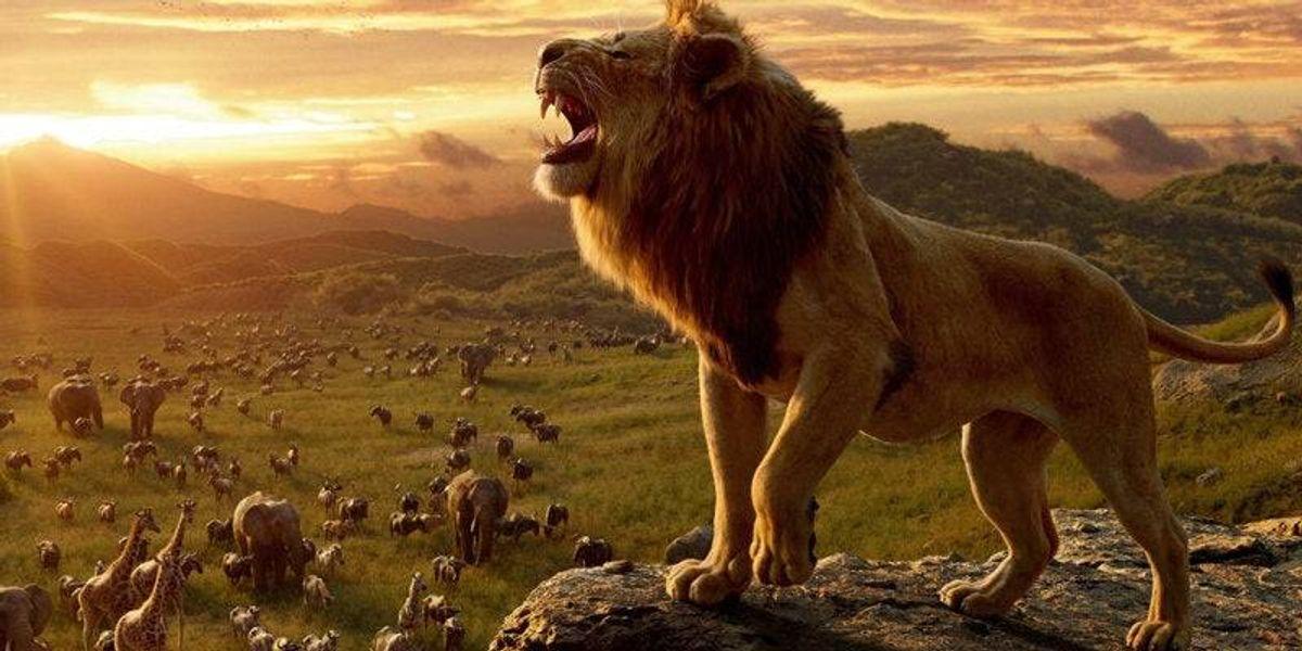 Estas son las voces latinas que le darán vida a los personajes de El Rey León