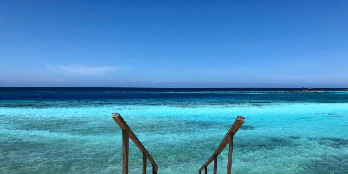 Este verano aprende a preparar el trago perfecto ¡Aruba Arriba!