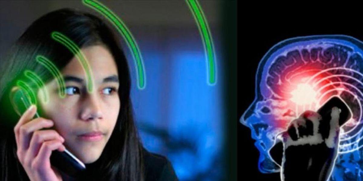 La radiación de los celulares podría aumentar el riesgo de tumores cerebrales
