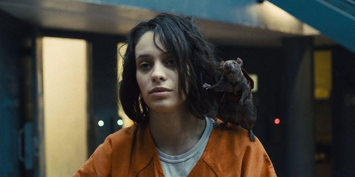Elenco de 'Esquadrão Suicida 2' fez testes com ratos de verdade